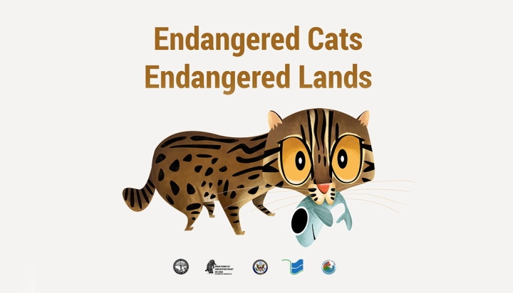 Endangered Cats, Endangered Lands