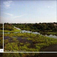 MBZ-annual-report-2015_P22