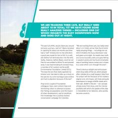 MBZ-annual-report-2015_P23