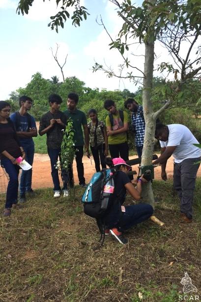 Students setting camera traps