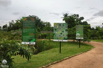 An-Urban-Wetland.-A-Walk-in-the-Park2